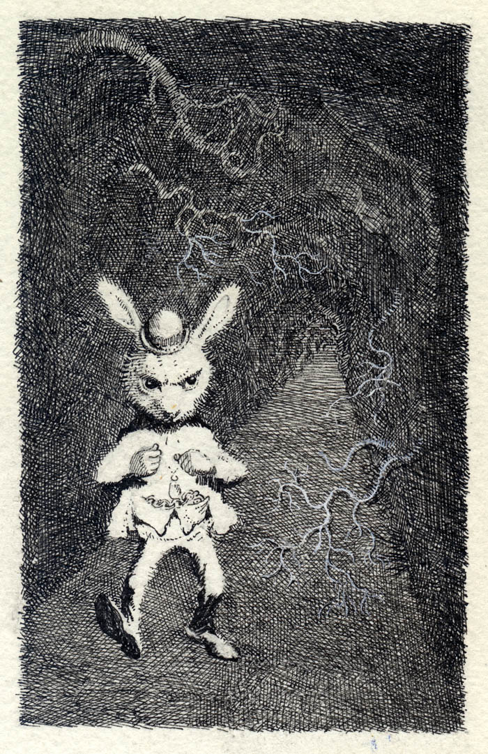 The White Rabbit-1